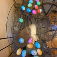 social distancing Easter eggs